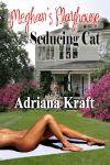 seducing-cat