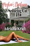 seducing-cat