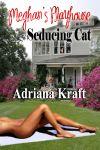 mp_seducingcat_front1
