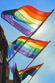 three pride flags